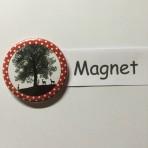 """Magnet """"Underem Ahorn""""geeignet für Magnetwand, hält 450 Gramm!"""
